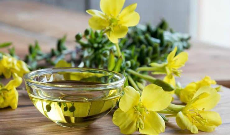 Çuha çiçeği yağı nedir, faydaları nelerdir?