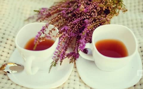 Funda çayı ne işe yarar?