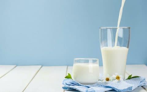 Günlük süt hakkında detaylı bilgi