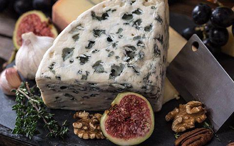 küflü peynir hakkında bilgi