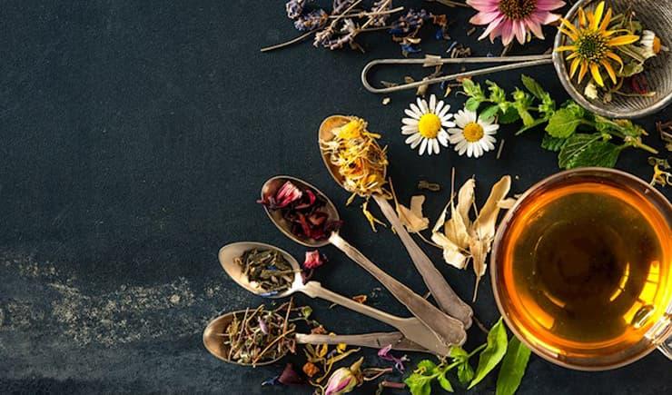 Melisa çayı nedir, faydaları nelerdir?