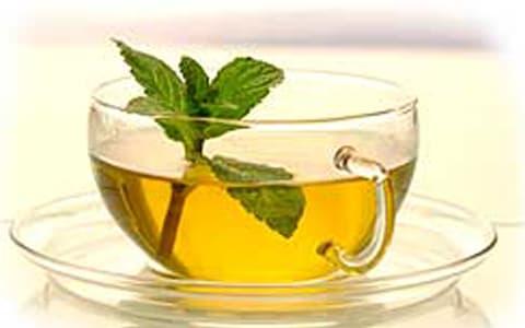 Melisa çayı neye iyi gelir