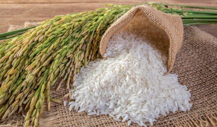 Osmancık pirinç ve baldo pirinç nedir?