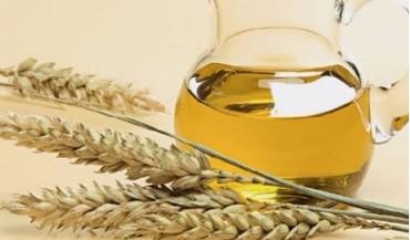Buğday yağı nedir, faydaları nelerdir?