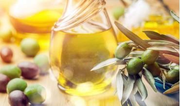 En iyi zeytinyağları hangi bölgemizde üretiliyor?