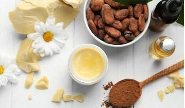 Kakao yağı nedir, faydaları nelerdir?