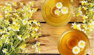 Papatya çayı nedir, faydaları nelerdir?