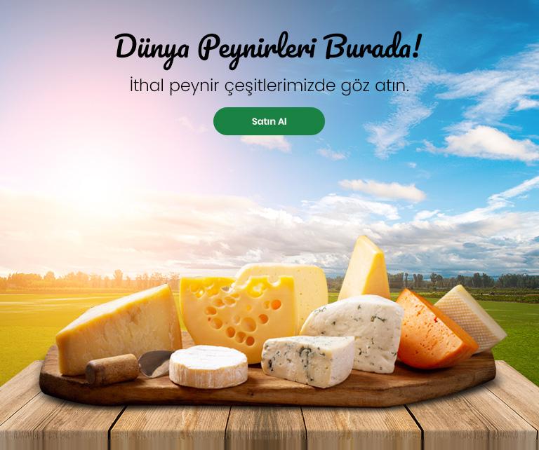 İthal Peynirler